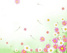 Flowers In Rainbow Wallpaper In The Blue Mood Flowers Wallpaper Glow Flowers Wallpaper Beautiful Rosses Wallpaper Exotic F. Flower Background Wallpaper, Rainbow Wallpaper, Wallpaper Pc, Flower Backgrounds, Wallpaper Backgrounds, Powerpoint Background Templates, Cool Paper Crafts, Pink Themes, Writing Paper