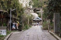 Otoyo Shrine, Kyoto | by Christian Kaden