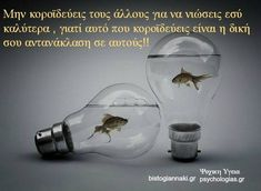 Greek Quotes, English Quotes, Languages, Wisdom, Words, Life, Idioms, Horse