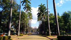 Inspirada nos jardins do Palácio de Versalhes a Praça da Liberdade em Belo Horizonte é um convite a dar uma pausa e descansar em um ambiente agradável e tranquilo. Conta com um coreto onde jovens se reúnem além de um chafariz iluminado a noite. Ao redor alguns prédios históricos dão um charme a mais. Há bancos por toda a parte mas as pessoas gostam mesmo é de sentar no gramado às vezes até deitar e relaxar. Hoje vi gente lendo livro passeando com cachorro e fazendo caminhada.  #melevadeleve…