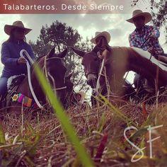 ¡La mejor vista la otorga el lomo de un caballo! #Caballistas #Colombia #Caballos #SanFermin