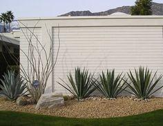 Desert Modern Landscaping « Palm Springs Modern Homes