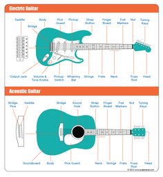 A breakdown of the parts of a guitar.