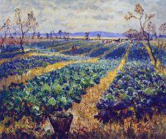 Cabbage Field - Konstantin Gorbatov