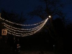 """Teri Smith describes how a star 'appeared' above her garden. """"I found a picture that I loved of a star. As I was decorating outdoors for Christmas I showed it to my husband and this is what he came up with!"""