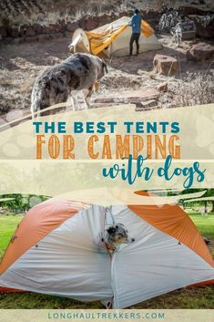 Would you like to go camping? If you would, you may be interested in turning your next camping adventure into a camping vacation. Camping vacations are fun and exciting, whether you choose to go . Best Tents For Camping, Cool Tents, Camping Glamping, Camping Hacks, Camping Gear, Camping Dogs, Camping Essentials, Camping Gadgets, Camping List