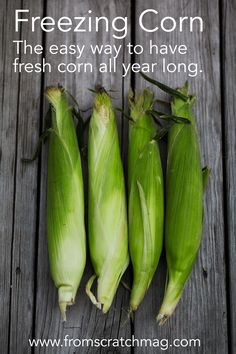 Freezing Corn. The easy way to have fresh corn all year long. From Scratch Magazine.