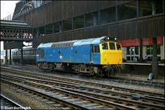 class 25 diesel - Google Search Electric Locomotive, Diesel Locomotive, British Rail, Great Western, Train Set, Rats, Southern, Blue, Google Search
