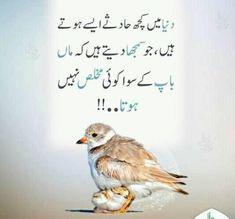 Parents Quotes We can upload sad poetry, love poetry, Bewafa Shayari, Dard Shaya… - Modern Inspirational Quotes In Urdu, Best Quotes In Urdu, Best Quotes Images, Funny Quotes In Urdu, Best Islamic Quotes, Islamic Phrases, Deep Quotes, Inspiring Quotes, Urdu Funny Poetry