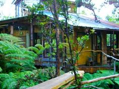 Treehouse Vacations, Homes in Treetops | FlipKey