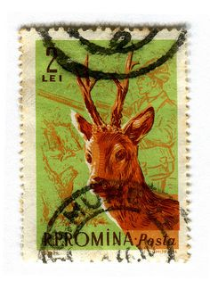 Romania Postage Stamp : Deer, 1961