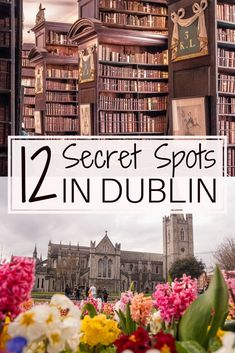 12 Unique & Secret Spots in Dublin You Must See Travel tips 2019 12 quirky, unique, offbeat and unusual things to do in Dublin, Ireland. Here are the very best secret spots in Dublin which you won't want to miss on any trip to the Irish capital! Backpacking Europe, Europe Travel Guide, Europe Destinations, Dublin Travel, Ireland Travel, Galway Ireland, Ireland Food, Belfast Ireland, Cork Ireland