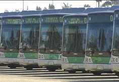 Transperth Buses, Perth, Western Australia
