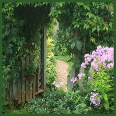 Arbor and path