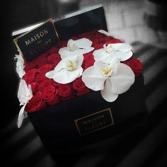 Roses & Orchids ♥ Maison Des Fleurs