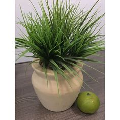 Shop Living Room Bedroom Simulation Artificial Plant Lucky Grass - Overstock - 30985081 Artificial Cactus, Wooden Vase, Cute Room Decor, Large Pots, Types Of Plants, Green Plants, Vases Decor, Home Decor Outlet, Living Room Bedroom
