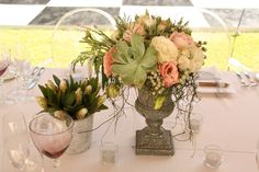 Wedding table setting - Succulent and roses with fynbos Cape Town South Africa, Wedding Table Settings, Amazing Gardens, Garden Wedding, Celebrations, Glass Vase, Wedding Flowers, Succulents, Roses