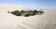 desert oasis town of huacachina