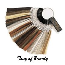 Tony of Beverly Wigs Tawny Rooted Wig Styles, Curly Hair Styles, Natural Hair Styles, Blonde Roots, Dark Roots, Chin Length Cuts, Light Strawberry Blonde, Root Color, Champagne Blonde
