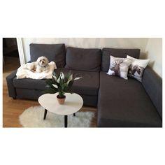Saturday morning on the couch, looking at the snow outside ❄️ #weekend #vacation #saturday #saturdaymorning #ikea #jysk #hm #style #home #decor #interior #interiordesign #fashion #malteseofinstagram #malteseofficial #maltese #bailey #pet #dog #dogstagram #petsofinstagram #dogowner #love #denmark #copenhagen #danish #nordichome #nordiskehjem #interiordecor #homedesign