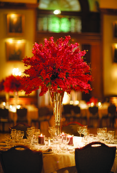 A Romantic, Musical Downtown Wedding romantic, classic, glamorous Philadelphia real wedding Red Wedding Flowers, Red Flowers, Orchid Centerpieces, Tall Centerpiece, Red Orchids, Red Vases, Kirchen, Floral Arrangements, Flower Arrangement