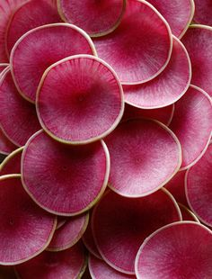 More watermelon radishes, like dyed silver dollars or thinly sliced blood oranges - gorgeous.