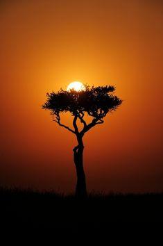 Mara sunset ,Masai Mara, Kenya