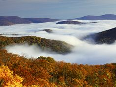 Best Road Trips: Skyline Drive, Front Royal to Rockfish Gap through Shenandoah National Park.  Picture of fall foliage and fog covering Shenandoah National Park