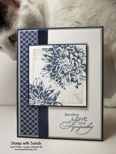 Stamp with Sandy: Love and Sympathy. Stamp Sets: Love & Sympathy, Blooming with Kindness Card Stock: Whisper White, Sahara Sand, Night of Navy Designer Series Paper: Regals Stack Ink Pads: Sahara Sand, Night of Navy Accessories: Night of Navy Seam Binding Making Greeting Cards, Greeting Cards Handmade, With Sympathy Cards, Stampin Up Karten, Hand Stamped Cards, Stamping Up Cards, Get Well Cards, Card Sketches, Paper Cards