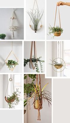 If you bring as many plants home as we do, hanging planters will be your best friends. Make use of all that valuable overhead space when you run out of room on flat surfaces! We've spotted some great