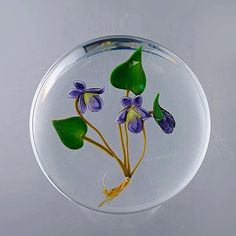A glass paperweight - Paul Stankard Violet