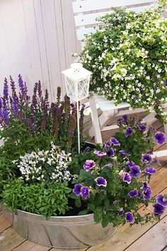 blommor_altan Porch, Google, Plants, Lawn And Garden, Balcony, Patio, Plant, Sunrooms, Planets