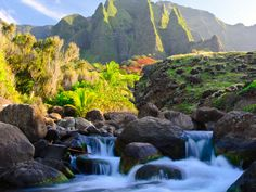 Kalalau Valley Stream, Kauai, Hawaii