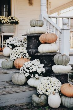 Rustic Cottage Farmhouse Fall Porch Steps I feel like this is an annual thing now. Me piling pumpkins & mums on our front steps & taking a million photos at sunri. Porch Steps, Front Steps, Fall Home Decor, Autumn Home, Front Porch Fall Decor, Fall Porches, Rustic Fall Decor, Farmhouse Front Porches, Rustic Cottage