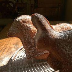 Oschderlemmele (agneau de Pâques) et Oschderhas (lapin de Pâques) d'Alsace  #Oschderlemmele #Oschderhas #orstern#easter #rabbit #lamb #patisserie #cake #alsace #cuisine #food #homemade #faitmaison N'hésitez pas à nous demander la recette nous la publierons dans notre blog http://ift.tt/1q7mxub #amazing #eat #foodporn #instagood #photooftheday #yummy#sweet #yum #Instafood #dinner #fresh #eatclean #foodie #hungry #foodgasm #tasty #eating Vous pouvez nous suivre dans Twitter @mememoniq ou sur…