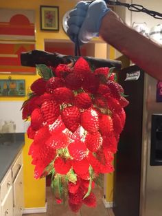 strawberry hanging lamp