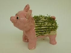 Chia Pets!!  The Calvert Canvas: Adventures in Middle School Art!: 6th Grade