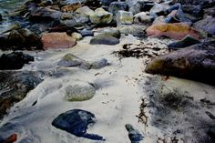 A beach in beautiful Lofoten