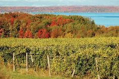 Best Breakfast & Brunch Restaurants in Traverse City, Grand Traverse County: Find TripAdvisor traveler reviews of the best Traverse City Breakfast & Brunch Restaurants and search by price, location, and more.