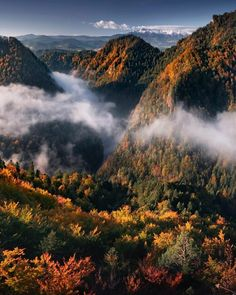 Pieniny National Park World Pictures, Travel Abroad, No Time For Me, Poland, Waterfall, National Parks, Community, Explore, Mountains