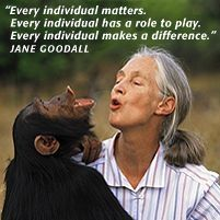 ♥ Jane Goodall ♥ is a British primatologist, ethologist, anthropologist, and UN Messenger of Peace. Considered to be the world's foremost expert on chimpanzees, Goodall is best known for her 45-year study of social and family interactions of wild chimpanzees in Gombe Stream National Park, Tanzania. She is the founder of the Jane Goodall Institute and has worked extensively on conservation and animal welfare issues.