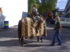 #TV #movie #horse #horse #rug #historical #janne_caro #paronedesign