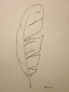 Sea bird feather -- original ink drawing | Ink Drawings, Feathers ...