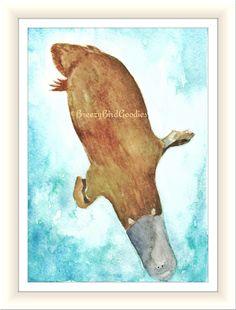 Platypus watercolour  wildlife art  nature print of original