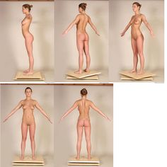 photography:nudes Tpose reference turnaround - Google Search