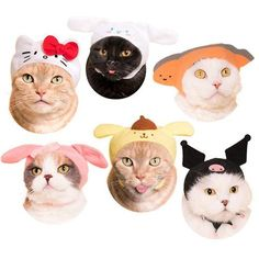 Sanrio Character Cat Caps Cat Hat, Room Posters, Photo Wall Collage, Pics Art, Chibi, Cute Stickers, Wall Prints, Art Inspo, Cute Cats