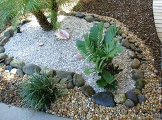 great ideas for using rock mulch in your landscape planting areas and garden tips - Mulch Designs