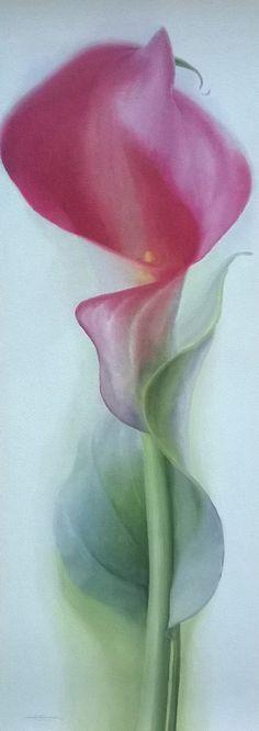 Постер Pink Calla 2, 25х70 См