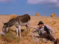 No te pierdas este vídeo. Humor del bueno. Por cierto, la interpretación del agricultor, genial.