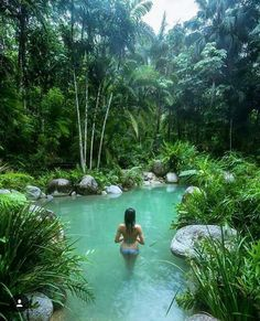 Having a pool sounds awesome especially if you are working with the best backyard pool landscaping ideas there is. How you design a proper backyard with a pool matters. Tropical Pool, Tropical Gardens, Backyard Pool Landscaping, Natural Swimming Pools, Dream Pools, Swimming Pool Designs, Cool Pools, Water Features, Landscape Design